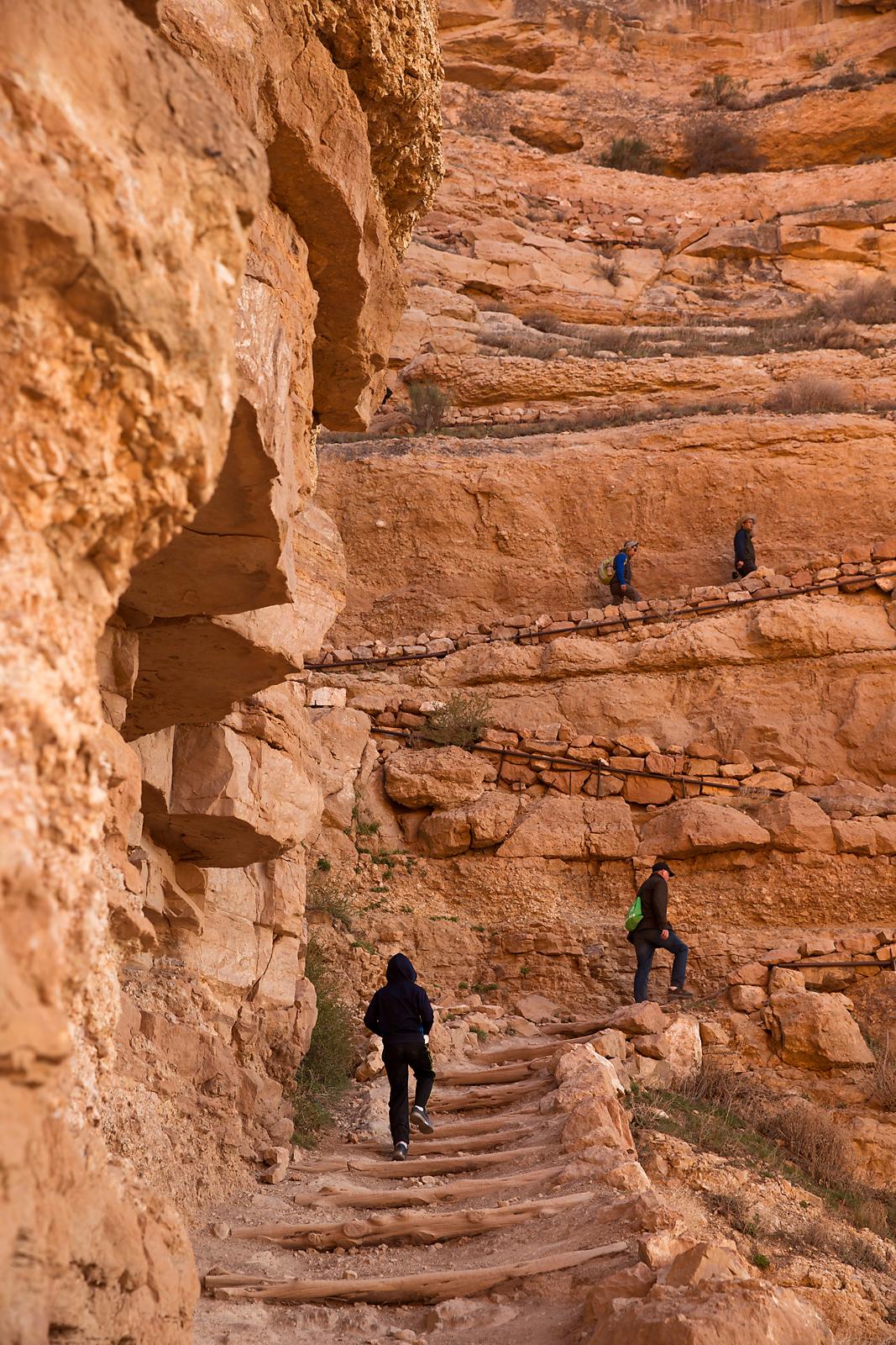 9546_Hiking trail copy