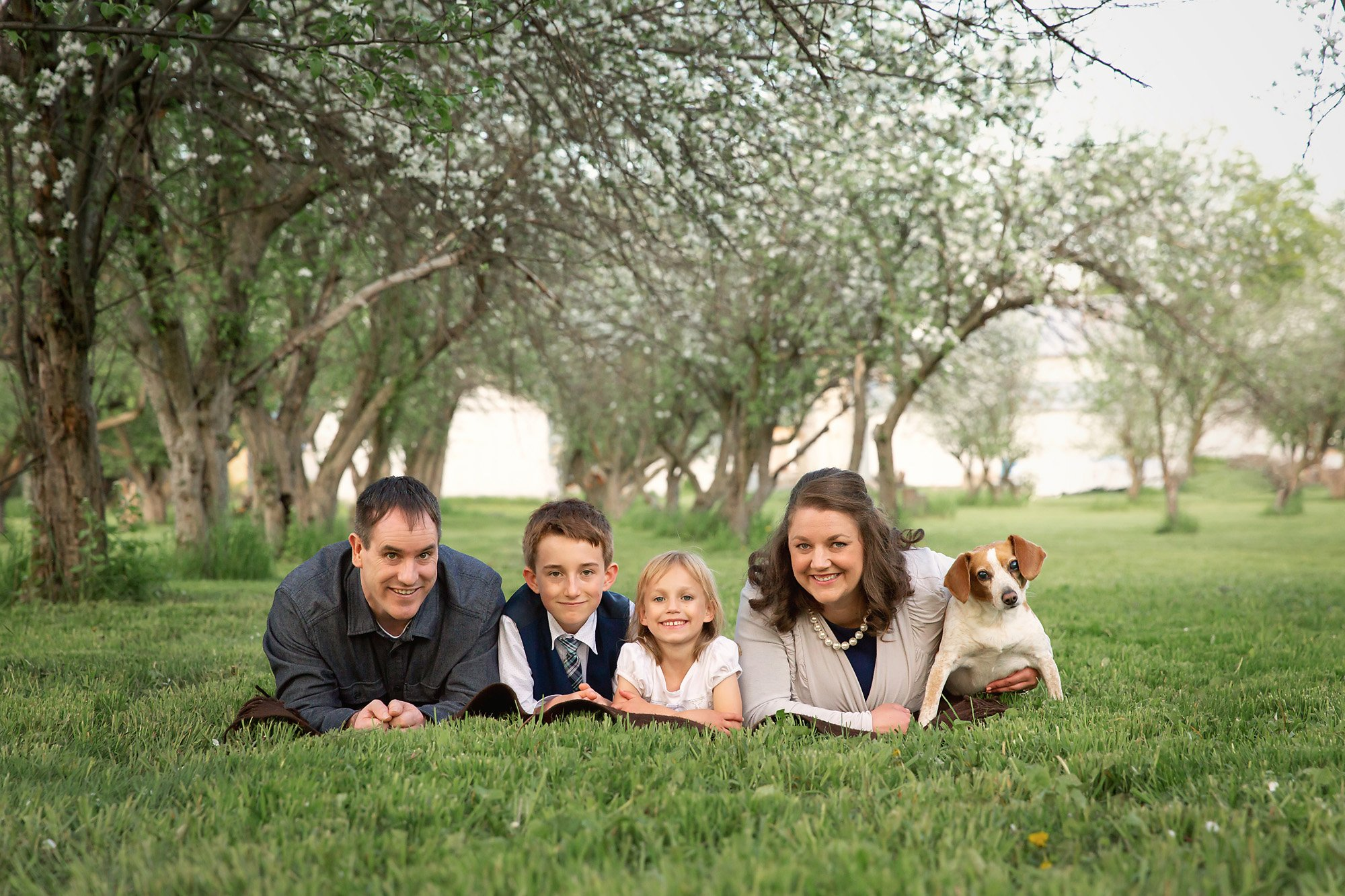 Family of 4 laying on their stomachs during a family session with Julie Collins Photography